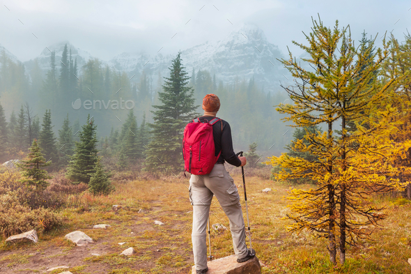 Hike in autumn season - Stock Photo - Images