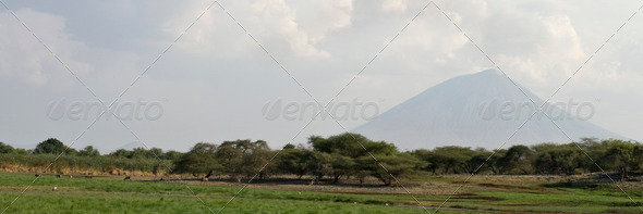 landscape with Ol Doinyo Lengai volcano in background, Tanzania, Africa - Stock Photo - Images