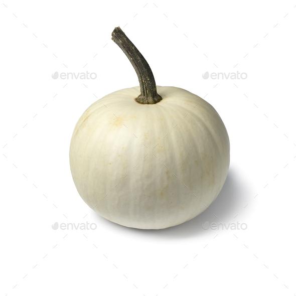 Whole single white Lumina pumpkin - Stock Photo - Images
