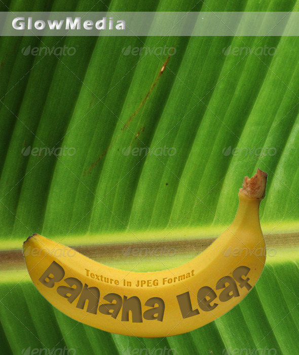 Banana Leaf - Backgrounds Graphics