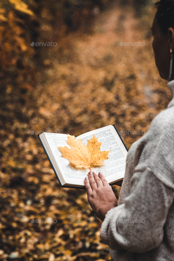 Autumn concept, an open book in the hands of a girl with yellow leaves - Stock Photo - Images