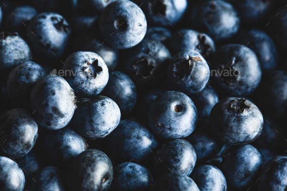 Freshly picked blueberries - Stock Photo - Images