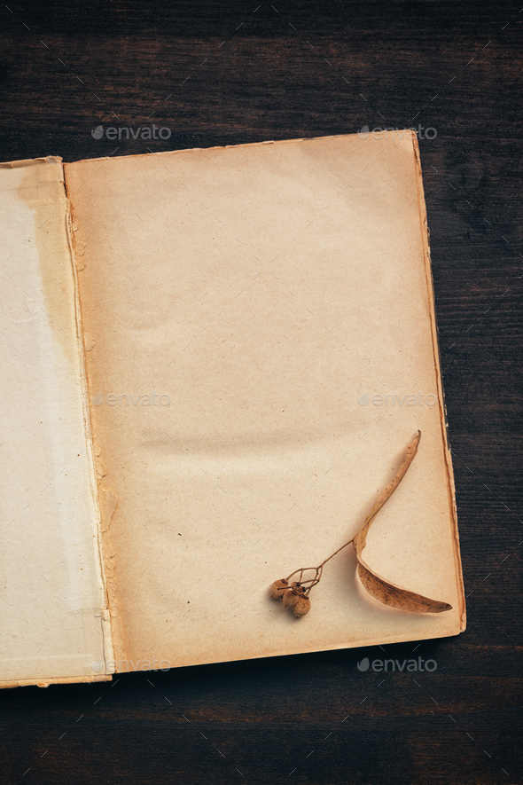 Vintage book blank pages mock up top view - Stock Photo - Images