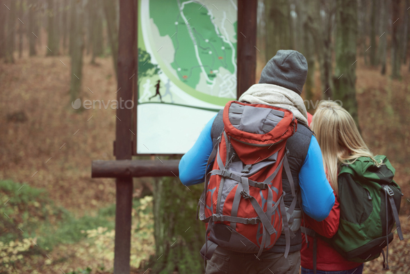 Looking at the map in the park - Stock Photo - Images
