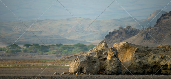 African landscape, Tanzania - Stock Photo - Images
