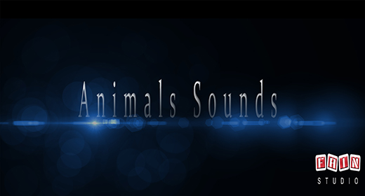 Animals Sounds