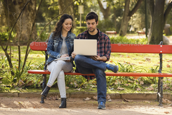 Friends studying in the park - Stock Photo - Images