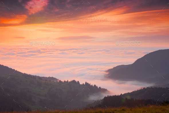 Mountain peaks above the clouds at sunset - Stock Photo - Images