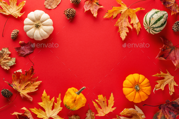 Autumn arrangement with leaves and pumpkin - Stock Photo - Images