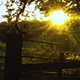 Countryside Sunset - VideoHive Item for Sale
