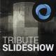 Tribute Slideshow  l  Memories Titles  l  History Promo - VideoHive Item for Sale