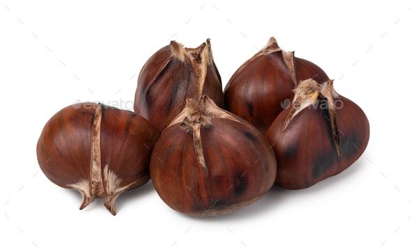 chestnuts on a white background - Stock Photo - Images