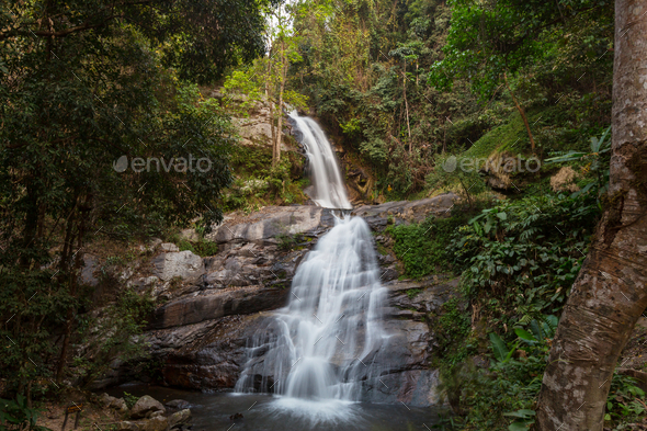 Waterfall in the forest - Stock Photo - Images