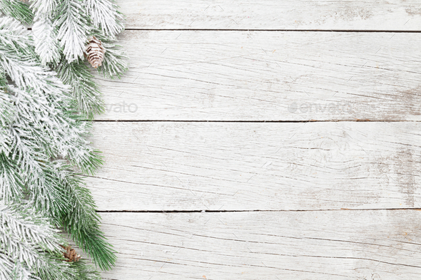 Christmas card with fir tree - Stock Photo - Images