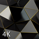 Black Polygon Waves 91 - VideoHive Item for Sale