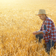 Farmer in straw hat uses his tablet pc at ready for harvest whea - PhotoDune Item for Sale