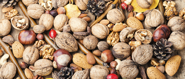 Assortment of nuts - Stock Photo - Images
