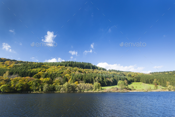 Lake Rursee in Autumn, Germany, Eifel - Stock Photo - Images