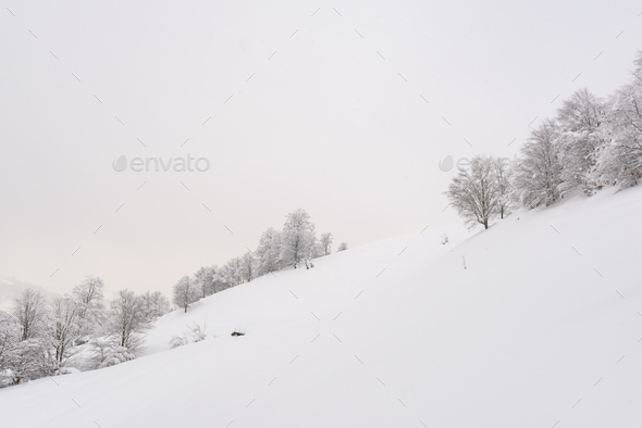 Minimalistic winter landscape in cloudy weather - Stock Photo - Images