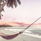 Hammock on the beach - PhotoDune Item for Sale