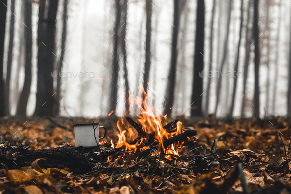 Bonfire in the forest in the evening - Stock Photo - Images