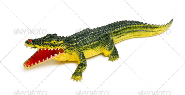 Crocodile toy in front of white background - Stock Photo - Images