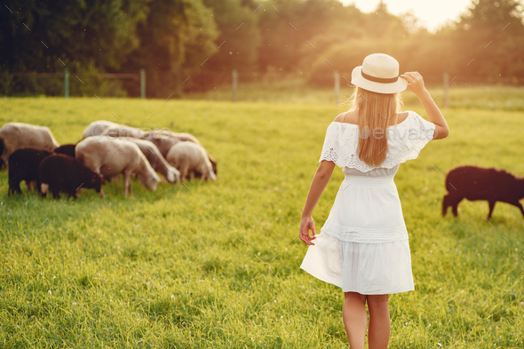 Cute girl in a field with a goats - Stock Photo - Images