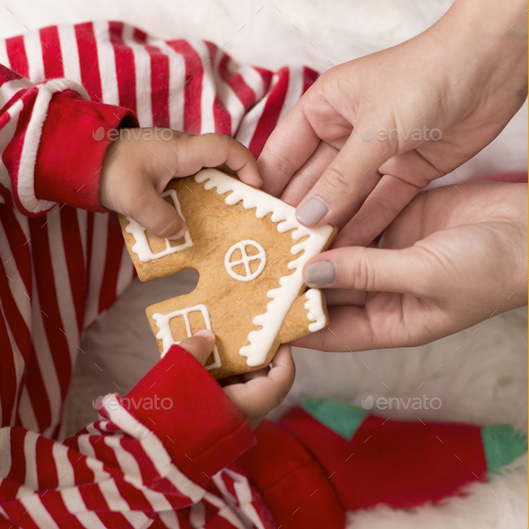 Baby taking Christmas gingerbread cookie from mother - Stock Photo - Images