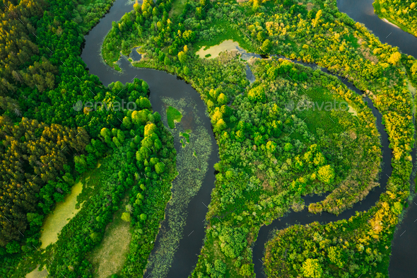Aerial View Green Forest Woods And River Landscape In Sunny Spri - Stock Photo - Images