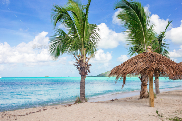 Idyllic tropical beach with white sand, turquoise ocean water and big palm trees - Stock Photo - Images