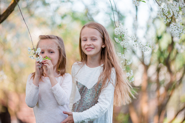 Adorable little girls in blooming cherry tree garden on spring day - Stock Photo - Images