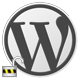 Wordpress Hide Option