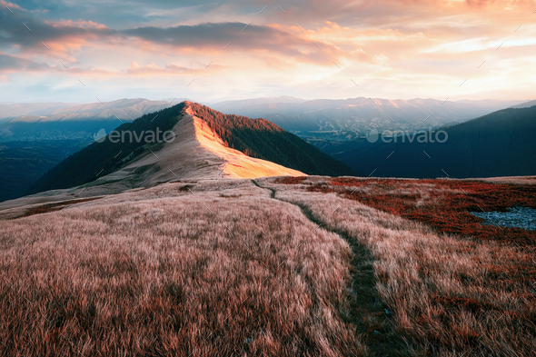 View of the grassy hills - Stock Photo - Images