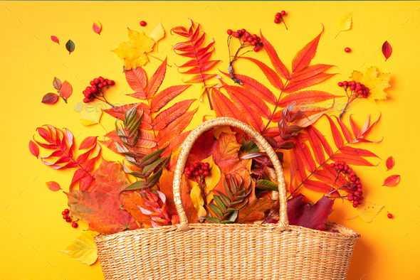 Autumn composition. Straw bag with autumn dried leaves on yellow background. Flat lay. Top view - Stock Photo - Images