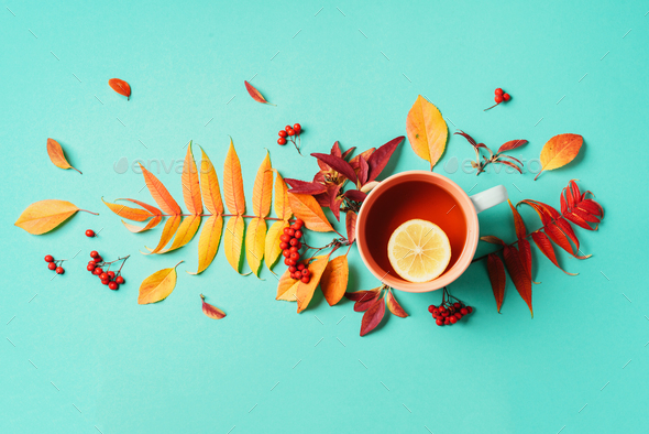 Autumn flat lay composition. Cup of tea, autumn bright leaves on blue background. Top view. Flat lay - Stock Photo - Images