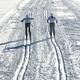 Pair of cross-country skiers - PhotoDune Item for Sale