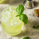 Homemade Alcoholic Gin Basil Smash - PhotoDune Item for Sale