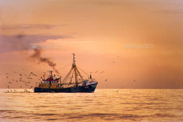 Fisherman boat on the sea with birds behind during sunset - Stock Photo - Images