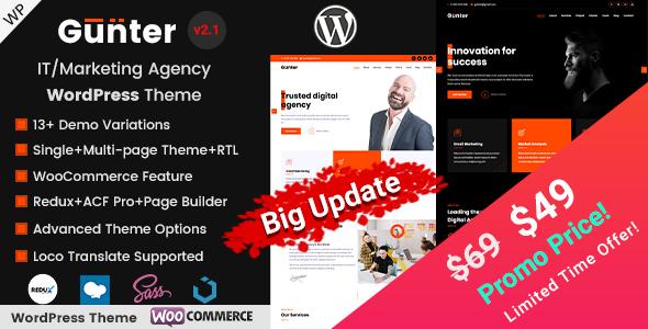 Gunter - IT and Marketing Agency WordPress Theme