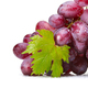 fresh rose muscat Grapes with leaf - PhotoDune Item for Sale