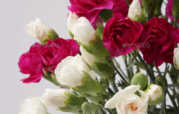Flower bouquet - Stock Photo - Images
