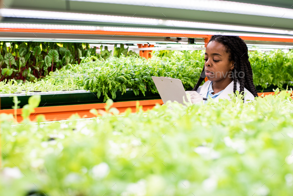 Young African researcher making notes among shelves with green seedlings - Stock Photo - Images