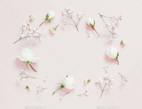 Flowers on a light pink background - Stock Photo - Images