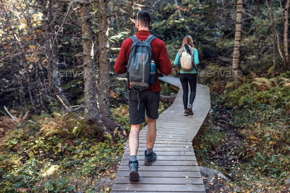 Two travel hikers with backpack walking while looking the landscape in the forest. Back view. - Stock Photo - Images