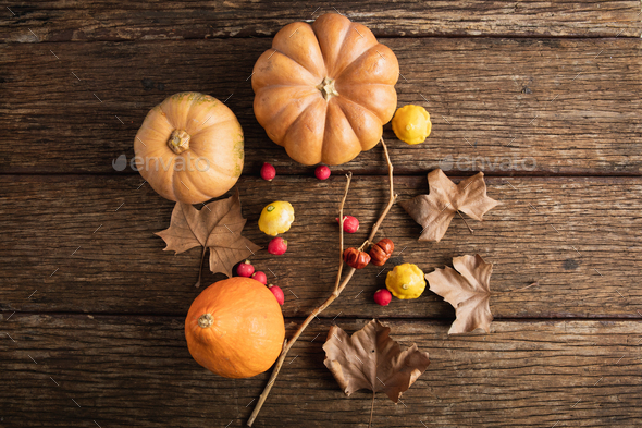 Autumn flat lay with pumpkins - Stock Photo - Images