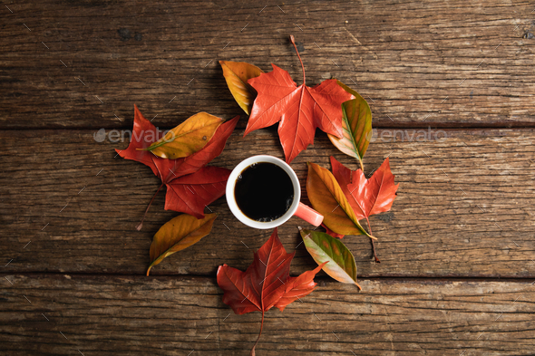 Autumn flat lay with coffee cup - Stock Photo - Images