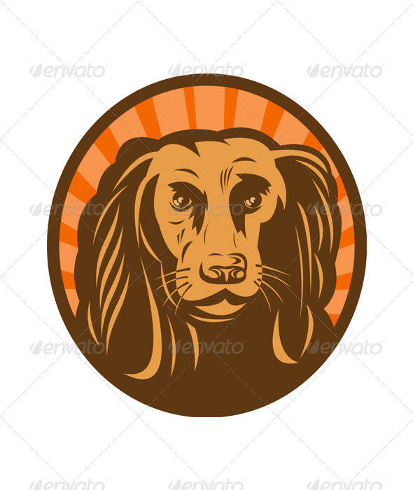 Golden Retriever Hunting Dog Head - Animals Characters