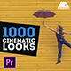 Cinematic Looks   Color Presets Pack - Premiere Pro - VideoHive Item for Sale