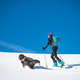 Girl makes ski mountaineering with his dog - PhotoDune Item for Sale