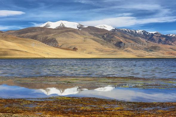 Tso Moriri lake in Rupshu valley in Ladakh, India - Stock Photo - Images